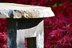 Bench in Japanese garden Royalty Free Stock Images