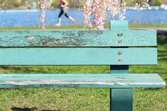 Bench and Jogger Stock Photo