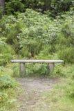 Bench in Killarney National Park Royalty Free Stock Photography