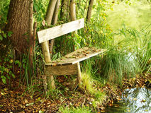 Bench at a lake (3) Stock Image
