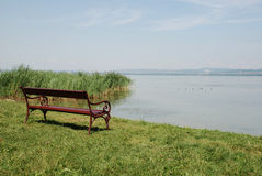 Bench by Lake Balaton Stock Image