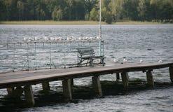 Bench at a lake Royalty Free Stock Image