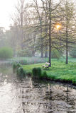Bench and lake in the morning light, spring garden Stromovka Royalty Free Stock Images