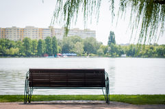 Bench at the lake Stock Image