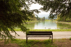 Bench by the lake Royalty Free Stock Image