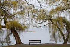 Bench at the lake Royalty Free Stock Photos