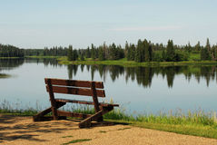 Bench with lake view. Spring view of astotin lake, elk island national park, alberta, canada stock image