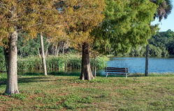 Bench by lakeside Stock Image