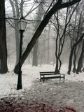 Bench and lantern. In a park Royalty Free Stock Images