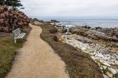 Bench, las ondas que machacan en una playa rocosa que hace espuma del mar en la playa de Moonstone Imagen de archivo libre de regalías