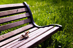 Bench with a leaf Stock Image