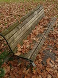 Bench with leafes in autumn royalty free stock photo