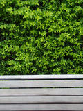 Bench with leaves Royalty Free Stock Photography