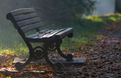 Bench and leaves Royalty Free Stock Photo