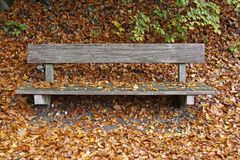 Bench with leaves in autumn Stock Images