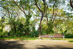 Bench located by walkway Royalty Free Stock Images