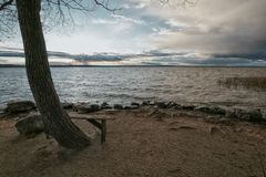 Bench for lovers. Wooden bench on the bank of the lake on a rainy autumn decline Stock Photos