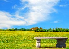 Bench in Meadow. Stone bench overlooking beautiful brightly colored meadow Royalty Free Stock Photos