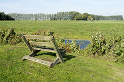 Bench in the meadows. Stock Photos