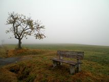 Bench in the Mist. A view of a tree, bench and fog in Germany stock photography