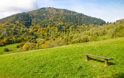 Bench on the mountain meadow Royalty Free Stock Photos