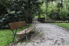 Bench na trilha de sujeira embebida pela chuva Fotografia de Stock