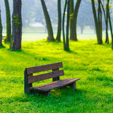 Bench in the natural Stock Photography