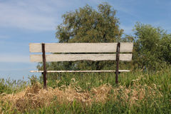 Bench in nature Royalty Free Stock Images