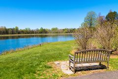 Bench near the beautiful lake with forest reflection on sunny spr Royalty Free Stock Image