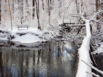 Bench Near Creek in Winter Forest, Fresh Snow royalty free stock photos