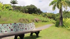 Bench near Keopuka Rock Overlook, Garden Of Eden, Road to Hana, Maui, HI, USA. Bench near the Keopuka Rock Overlook in the lush vegetation in the Garden Of Eden stock video