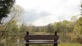 Bench near the lake. Bench set in a park on the shore of the pond stock video footage