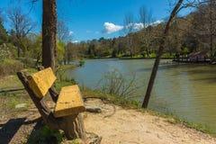 Bench near lake -2 Royalty Free Stock Image