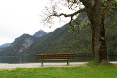 Bench in near lake shore at K�nigsee Bavaria 2 Royalty Free Stock Photos