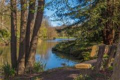Bench near lake in spring Royalty Free Stock Photo