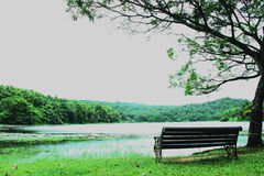 Bench near the lake. Bench on the waterfront of lake Royalty Free Stock Photos