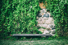 Bench near old stone wall covered with ivy leaves Royalty Free Stock Photography