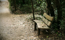 Bench near the path in the woods, romantic scene Stock Images