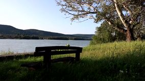 A bench near the river. A bench in the nature in a summer day stock video footage