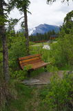 Bench near trail in park in Canmore, Alberta, Canada. Royalty Free Stock Photography