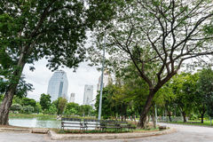 Bench near walkway in the park, Bangkok Thailand Stock Images