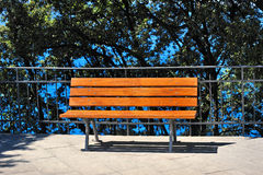 Bench near the water in the park on a sunny day Royalty Free Stock Image