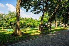 Bench nel parco pubblico verde a Bangkok, Tailandia Fotografia nel giorno del cielo blu, nell'erba di verde e nella priorità alta Fotografia Stock Libera da Diritti
