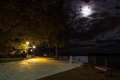 Bench nel parco sotto luce della luna ed i pali Fotografie Stock