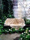 Bench no jardim Foto de Stock Royalty Free