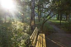 Bench no jardim público pequeno no luminoso do alvorecer pelo sol Imagem de Stock Royalty Free