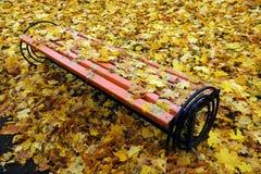 Bench no parque, coberto com as folhas caídas imagem de stock royalty free