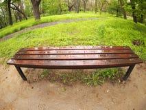 Bench no parque imediatamente depois de uma chuva de mola fotografia de stock