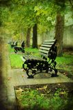 Bench in the old park. Royalty Free Stock Photo
