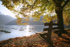 Bench On The Lake Royalty Free Stock Images